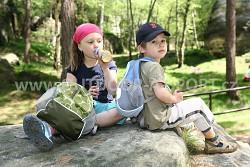 Dětský batoh BOLL Roo 12 l - bamboo/pine